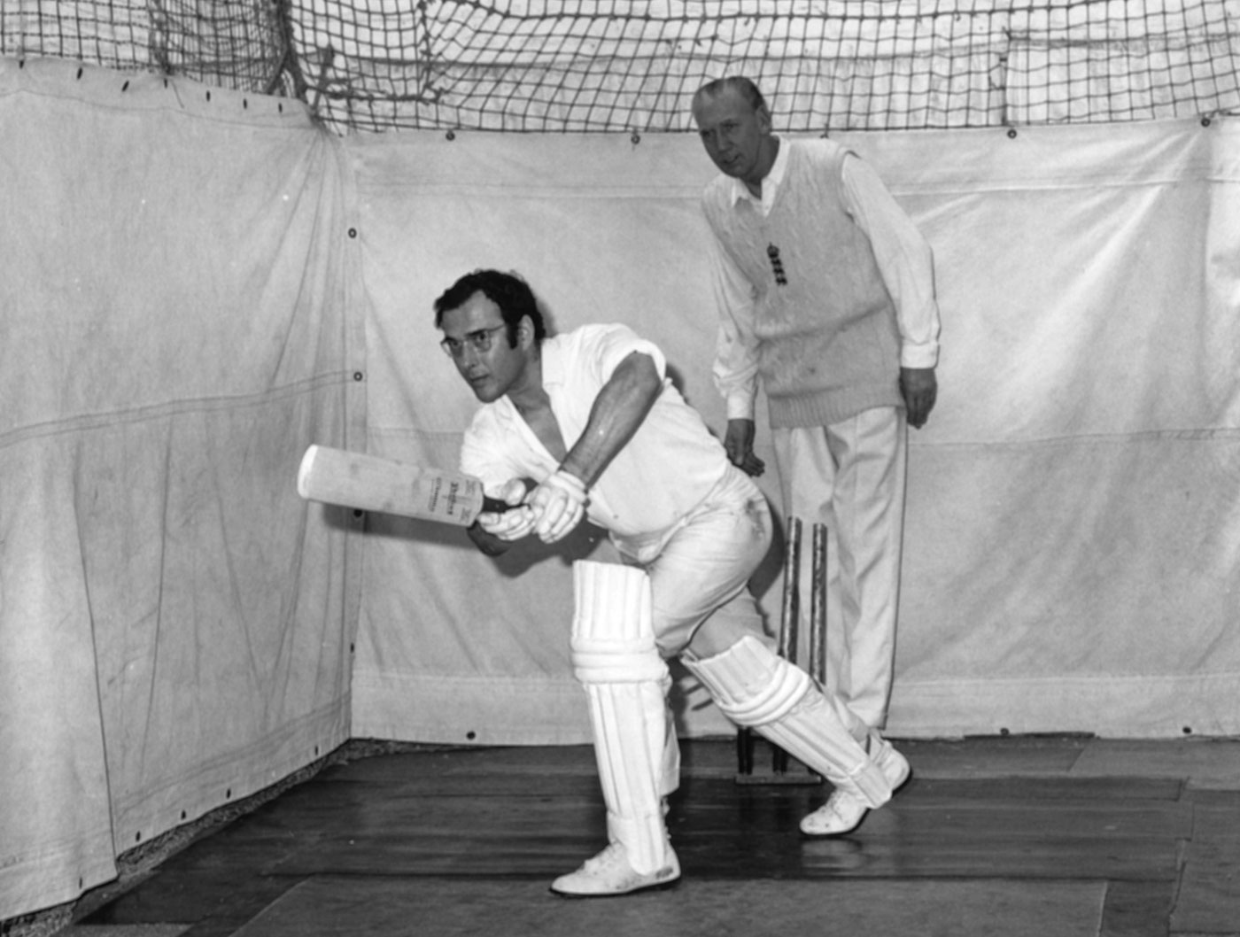 Harold Pinter and Cricket
